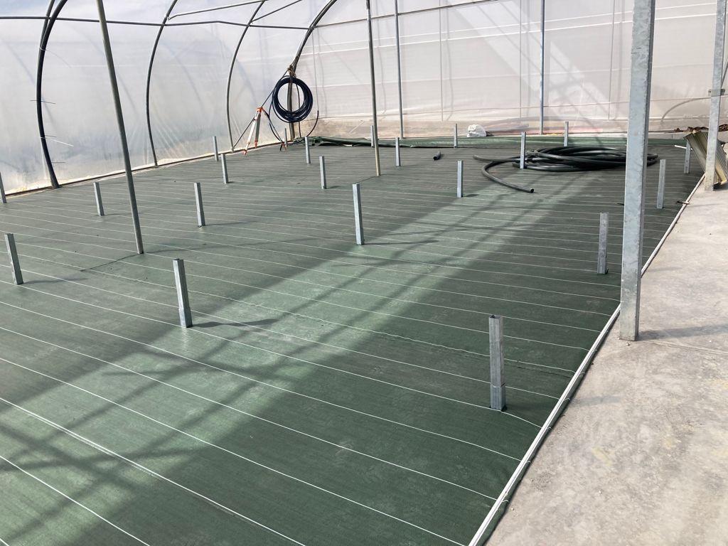 Malla anthierbas verde en el suelo de un invernadero